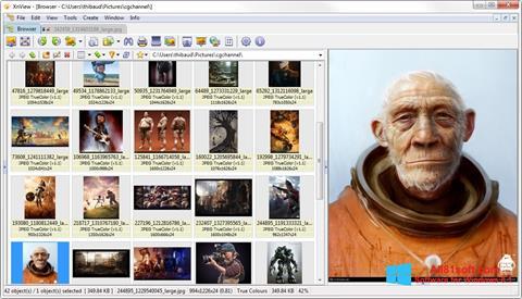 Ekraanipilt XnView Windows 8.1