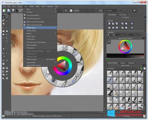 Ekraanipilt Krita Windows 8.1