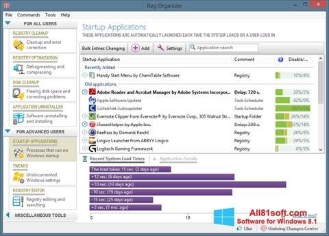 Ekraanipilt Reg Organizer Windows 8.1