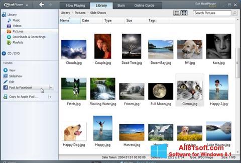 Ekraanipilt RealPlayer Windows 8.1